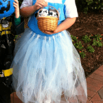 No-Sew Dorothy Halloween Costume